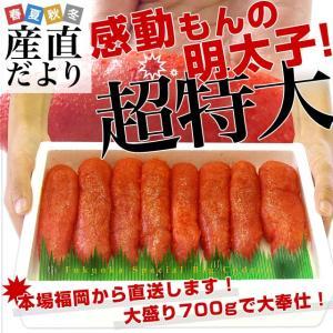 送料無料 福岡加工 辛子明太子 超特大1本もの 大盛700g...