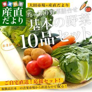 市場からご自宅へ直送 たっぷり野菜詰め合わせ 応援セット (国産おまかせ野菜10品セット)|sanchokudayori