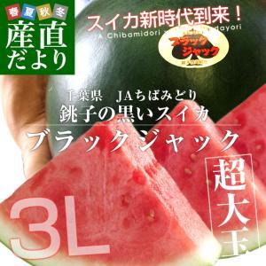 千葉県産 JAちばみどり 銚子の黒皮スイカ ブラックジャック 3L×2玉(約8キロ×2玉) 送料無料 西瓜 すいか|sanchokudayori