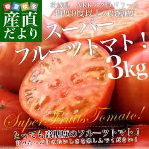 茨城県より産地直送 NKKアグリドリーム スーパーフルーツトマト 9度+ A品 約3キロ(20玉から35玉)  送料無料 高糖度トマト NKKトマト|sanchokudayori