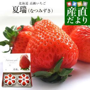 北海道より産地直送 高級いちご 夏瑞(なつみずき)約200g(6粒から7粒)×2パック 化粧箱入り ...
