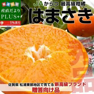 佐賀県より産地直送 JAからつ はまさき 秀品 LからSサイズ 約2.5キロ (12から18玉前後) 送料無料 柑橘 オレンジ みかん 唐津 浜崎|sanchokudayoriplus