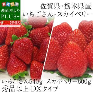 栃木県産スカイベリーと佐賀県産いちごさんの大人気いちご2箱セット (スカイベリー600gといちごさん540g)送料無料イチゴ 苺|sanchokudayoriplus