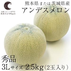送料無料 熊本県または茨城県産 アンデスメロン 秀品 3Lサ...