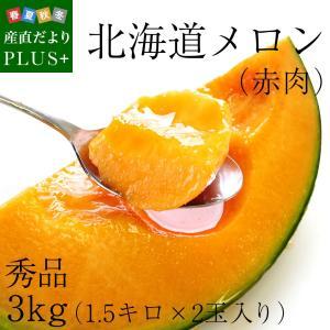 送料無料 北海道産 赤肉メロン 2玉入り (1.5キロ×2) めろん|sanchokudayoriplus