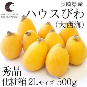 送料無料 長崎県産  ハウスびわ (大西海) 2Lサイズ 500g化粧箱 (9玉入り)  びわ