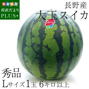 送料無料 長野県産 スイカ 秀品 Lサイズ以上 1玉 (6キロ以上) すいか 西瓜 大玉スイカ|sanchokudayoriplus