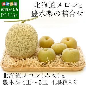 送料無料 北海道メロンと豊水梨 詰合せ 化粧箱入り フルーツセット  めろん なし|sanchokudayoriplus
