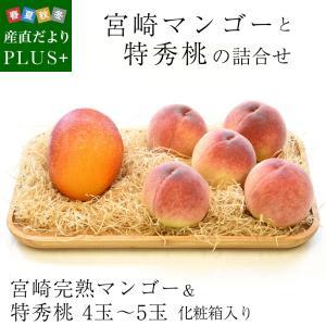 送料無料 宮崎マンゴーと特秀桃 詰合せ 化粧箱入り フルーツセット まんごー もも 夏ギフト2019 お中元ギフト|sanchokudayoriplus