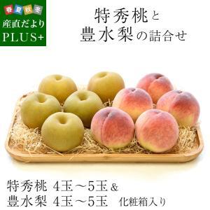 送料無料 特秀桃とハウス梨 詰合せ 化粧箱入り フルーツセット もも なし|sanchokudayoriplus