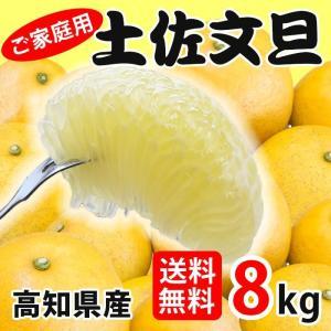 訳あり 土佐文旦 8kg 高知県産 ご家庭用|sancyokubin