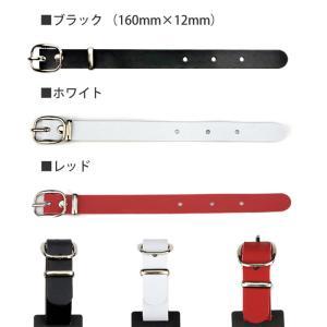 ゴルフ 角型 ブラック ネームプレート<同一内容2個セット>/メール便 送料無料/|sancyokubin|05