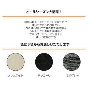 EM ビジネスソックス メンズ/メール便 送料無料/春夏用 コットン 綿 冷え取り靴下 日本製|sancyokubin|02