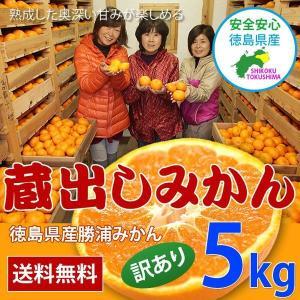 徳島県産 蔵出し 貯蔵みかん 5kg 訳あり 家庭用 勝浦みかん sancyokubin