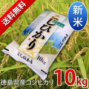 新米 平成29年産コシヒカリ 10kg 徳島県産/宅配 送料無料|sancyokubin