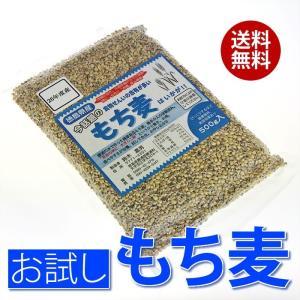 国産 もち麦 500g 徳島県産/メール便 送料無料/テレビで話題  無添加 食物繊維含有 大麦 もちむぎ|sancyokubin