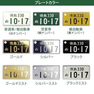 国道標識付 特許ナンバープレート ストラップ・キーホルダー 普通車レイアウト/メール便 送料無料|sancyokubin|02