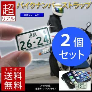 <同一内容2個セット> 超リアル 特許ナンバープレート ストラップ・キーホルダー 中型・大型バイクレイアウト/メール便 送料無料|sancyokubin