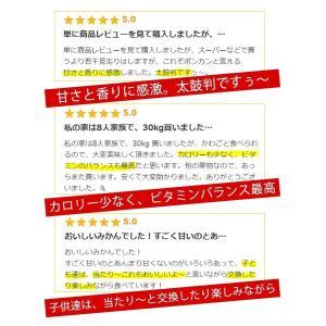【予約】(1月19日発送)訳あり 土佐ポンカン 5kg 高知県産/送料無料|sancyokubin|05