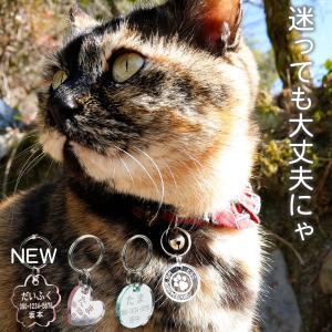 超軽量 猫用 迷子札 ネームタグ/メール便 送料無料/|sancyokubin