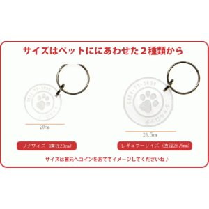 超軽量 猫用 迷子札 ネームタグ/メール便 送料無料/|sancyokubin|03