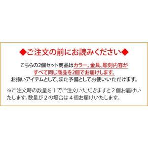 猫用 迷子札 ネームタグ<同一内容2個セット> メール便(ネコポス)送料無料・|sancyokubin|04