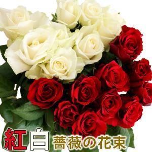 国産紅白のバラ 50cm×20本 ラッピング無料/産地直送 送料無料/優勝祝い 卒団・退職祝い 卒業 成人式 昇進祝い|sancyokubin