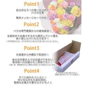 50本のバラの花束 40cm 無料ラッピング(徳島県産 産地直送 お祝い 誕生日ギフト)/宅配便 送料無料/|sancyokubin|02