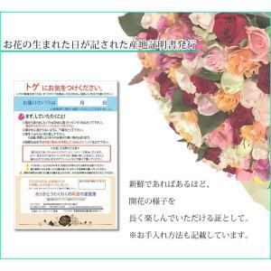 50本のバラの花束 40cm 無料ラッピング(徳島県産 産地直送 お祝い 誕生日ギフト)/宅配便 送料無料/|sancyokubin|05