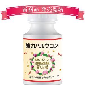 大吟醸春ウコン 厳選された沖縄県産春ウコンに高濃度水素水イオン液をプラス 600粒入り sandy