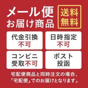 大豆発酵食品 マメビオプラス 30粒 sangakushop 02