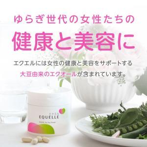 大塚製薬 エクエル パウチ 120粒×3袋 エクオール|sangakushop|03