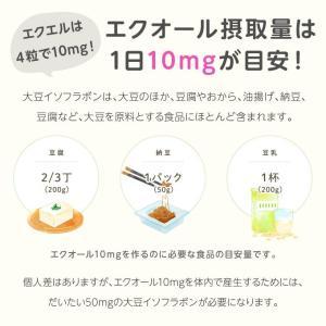 大塚製薬 エクエル パウチ 120粒×3袋 エクオール|sangakushop|05