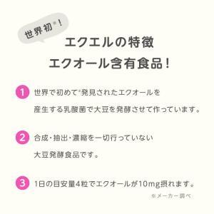 大塚製薬 エクエル パウチ 120粒×3袋 エクオール|sangakushop|06