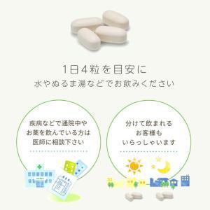 大塚製薬 エクエル パウチ 120粒×3袋 エクオール|sangakushop|07