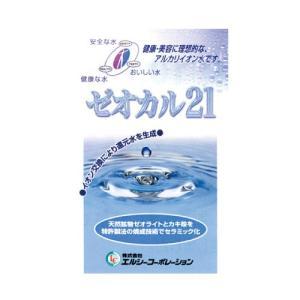 ゼオカル21 100g|sangakushop