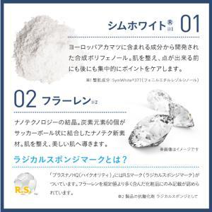 プラスナノHQ ハイクオリティ 5g シムホワイト|sangakushop|06
