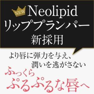 KAKEHIKI モティブリッププランパー 唇美容液|sangakushop|12