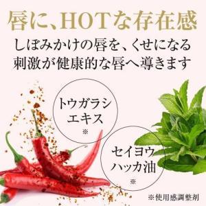 KAKEHIKI モティブリッププランパー 唇美容液|sangakushop|13