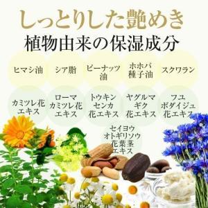 KAKEHIKI モティブリッププランパー 唇美容液|sangakushop|14