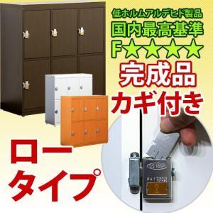 業務用 鍵付き下駄箱 ロータイプ カギ付き シューズボックス 日本製 完成品 L800-6D|sangostyle