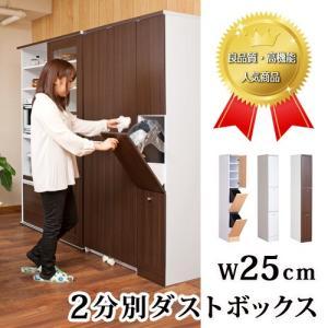 キッチン収納 スリム ダストボックス 2分別 キッチン収納 ゴミ箱 ごみ箱 おしゃれ 北欧|sangostyle