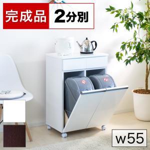 ダイニングダストボックス2D 2分別 ゴミ箱 家具調 台所用 生ごみ|sangostyle