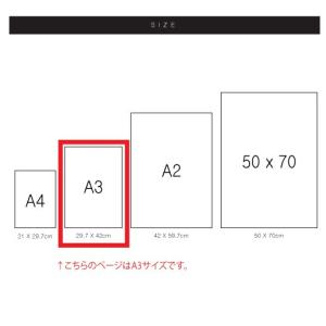 ポスター インテリア アートポスター お花 植物 おしゃれ  フォトポスター サンサンフー フラワーコレクション A3(フレームなし) sangsanghoo-jp 05
