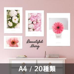 ポスター インテリア アートポスター お花 植物 おしゃれ  フォトポスター サンサンフー フラワーコレクション A4( フレームなし )|sangsanghoo-jp