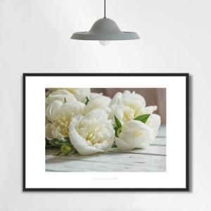 ポスター インテリア アートポスター お花 植物 おしゃれ  フォトポスター サンサンフー フラワーコレクション A4( フレームなし ) sangsanghoo-jp 11
