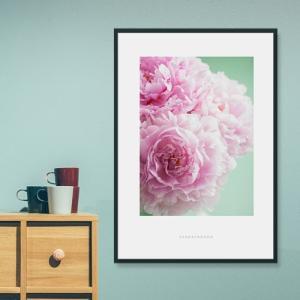 ポスター インテリア アートポスター お花 植物 おしゃれ  フォトポスター サンサンフー フラワーコレクション A4( フレームなし ) sangsanghoo-jp 13