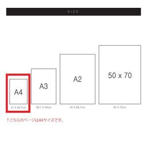 ポスター インテリア アートポスター お花 植物 おしゃれ  フォトポスター サンサンフー フラワーコレクション A4( フレームなし ) sangsanghoo-jp 05