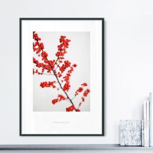 ポスター インテリア アートポスター お花 植物 おしゃれ  フォトポスター サンサンフー フラワーコレクション A4( フレームなし ) sangsanghoo-jp 09
