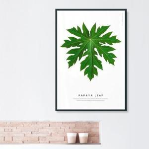 ポスター インテリア アートポスター 植物 おしゃれ フォトポスター サンサンフー リーフコレクション A2(フレームなし ) sangsanghoo-jp 11